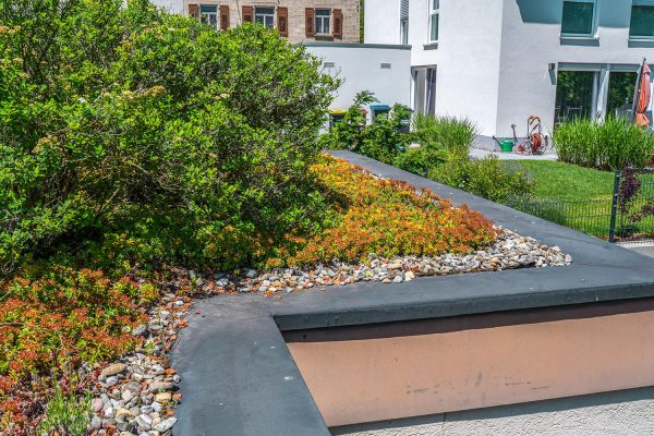 Gartenbau Dachbegruenung