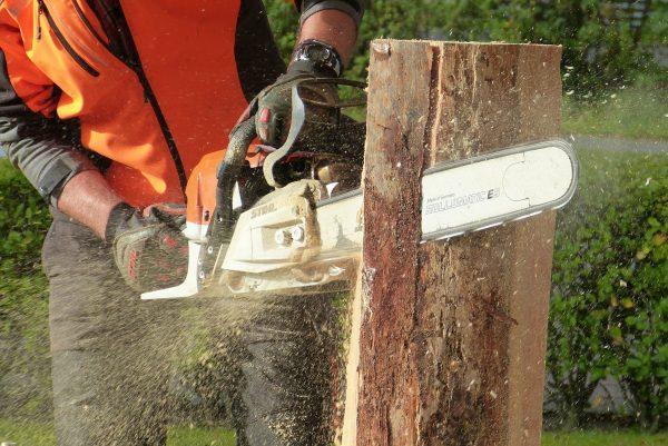Pflege Baumfaellung Nuertingen